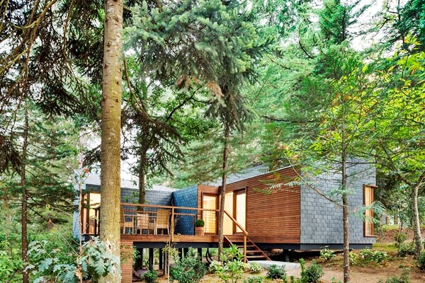 tree house hotel thermae spa break